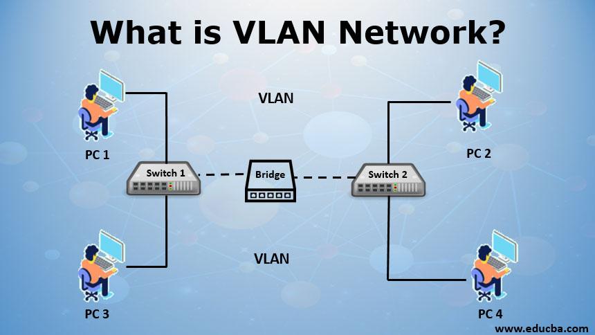 VLAN for business